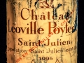 Chateau Leoville Poyferre, Grand Cru Classe, Bordeaux, 1995, Wine bottle photographed in studio with Fresnel Lighting. Pic: Brendan Lyon.
